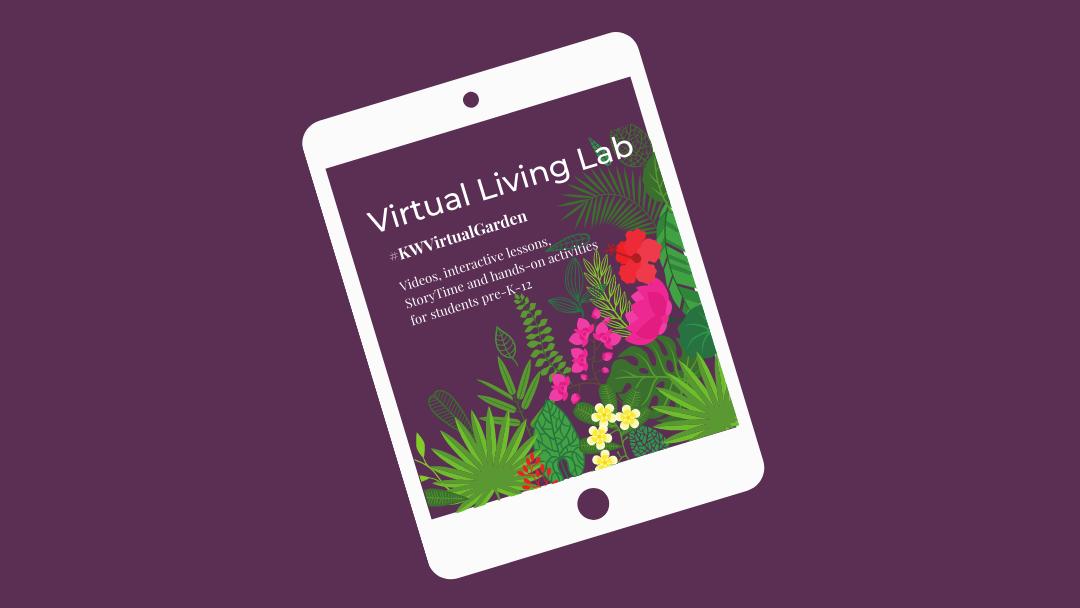 Virtual Living Lab Logo